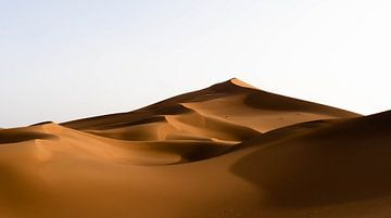 Goldene Wellen der Sahara von Jesse Barendregt
