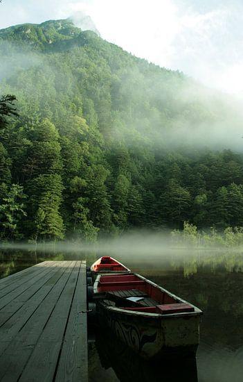 Early morning mist Japan 2 van Esther Ehren