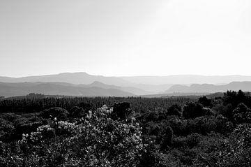 Reliëf bergen uitzicht bij God's Window, Zuid Afrika van Vera Boels