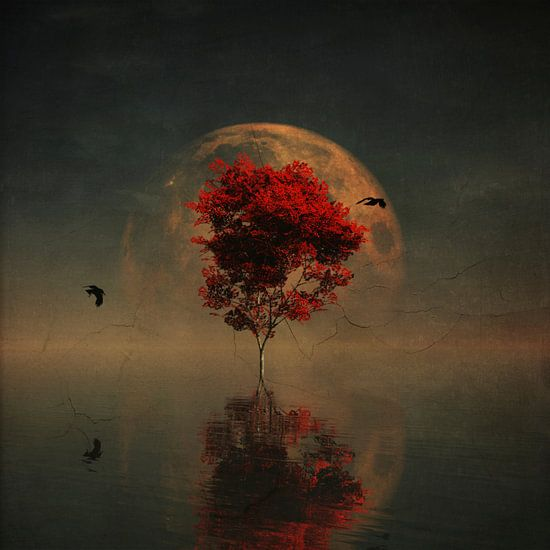 Droomlandschap – Droomlandschap met rode boom en volle maan