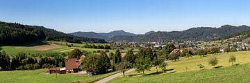 Schwarzwaldpanorama Zell am Harmersbach von Uwe Ulrich Grün