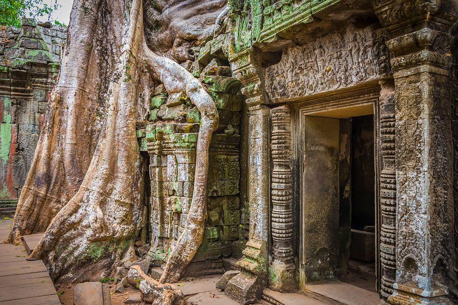 Overwoekerde tempel, Ta Prohm, Cambodja van Rietje Bulthuis