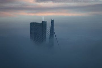 Rotterdam, Erasmusbrug in de mist, Holland, Nederland van