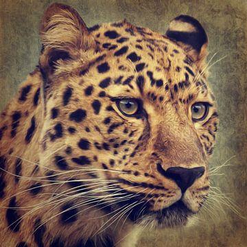 Leopard Portrait van Angela Dölling