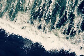 The Ocean Roars van Robin Dickinson