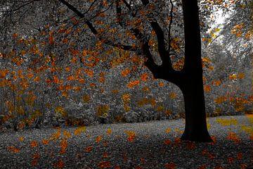 Autumn 2.0 van Herman Kremer