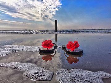 North Sea Flip flops   von Lisette OpTexel