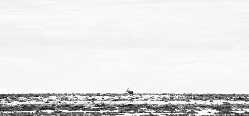 Gemsbok Walking Through Etosha's Plains van Jonathan Rusch