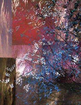 Blauwe en witte boom van Angel Estevez