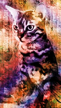 Kleurrijke kat van Nannie van der Wal