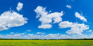 Wolkenluchten boven koolzaadveld von Fokko Erhart
