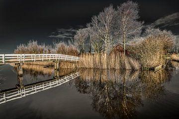 Brücke zum Haus hinter dem IJsselmeerdijk von Harrie Muis