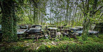 Alte Autos von Inge van den Brande