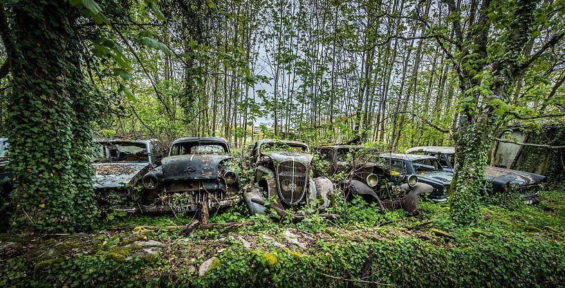 Oude auto's  van Inge van den Brande