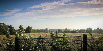 Uitzicht op de korenmolen in Werkhoven (NL), vanaf de Achterdijk aan het begin van de herfst. van