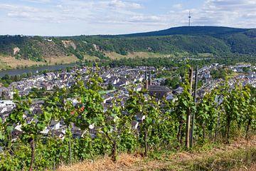 Stadtteil Güls an der Mosel, Koblenz, Rheinland-Pfalz, Deutschland, Europa von Torsten Krüger