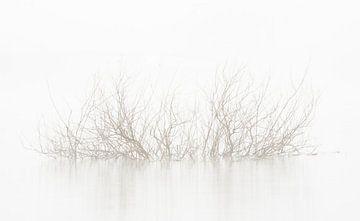 Stilleven, landschap in de mist. van Michel Knikker
