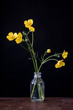 Hahnenfuß in Vase von Jenneke Boeijink