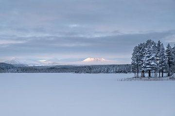 Bevroren landschap. van Marco Lodder