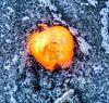 Apple on the Beach - Onderwater van Alex Hiemstra thumbnail