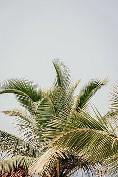 Speelse palm bladeren von Rebecca Gruppen