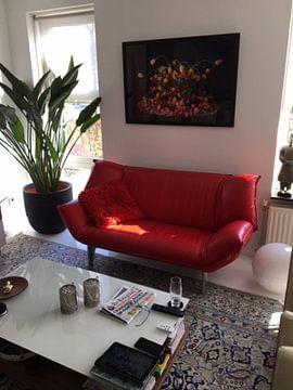 Kundenfoto: Tulpen Stillleben von Dirk Verwoerd