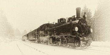 Dampfzüge im Harz, die alten Zeiten wieder aufleben von Hans Brinkel