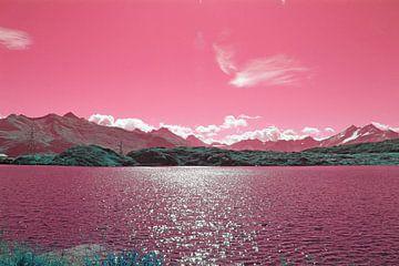 Furkapas in roze van Wilma Overwijn