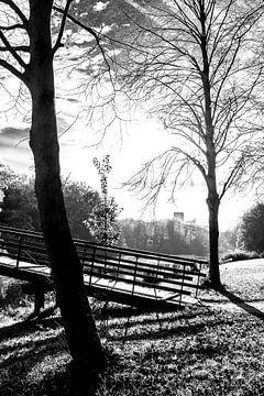 Het Haagse Bos. van Aukelien Minnema