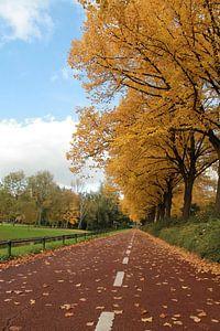 Herfst in Rotterdam van Milind Padalikar