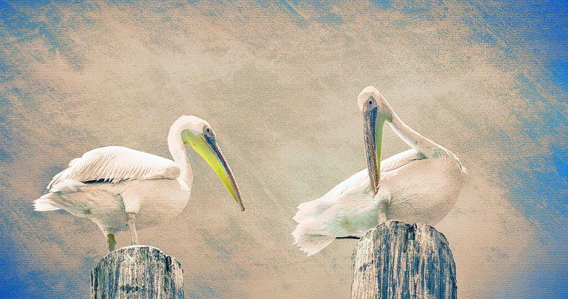 Pelikanen op een meerpaal, Namibië van Rietje Bulthuis