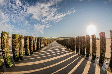 Palenrij op het strand van Westkapelle von Fotografie Jeronimo