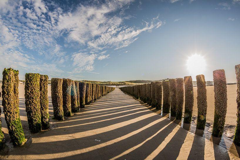 Palenrij op het strand van Westkapelle van Fotografie Jeronimo