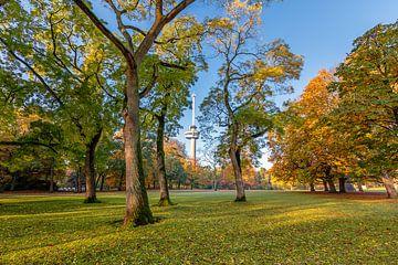 Der Euromast durch die Bäume im Park gesehen von Annette Roijaards