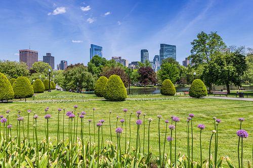 BOSTON Public Garden van Melanie Viola