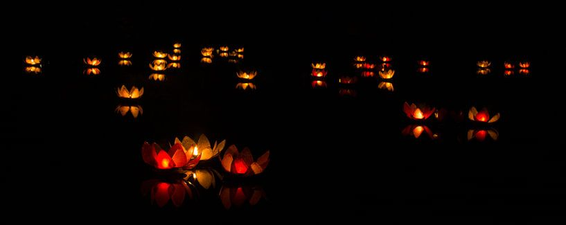 Verlichte lelies op het water. van Karl Smits