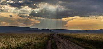Zonsondergang Tanzania van Gonda van Wijk