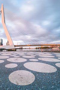 Refelcted Sunlight Rotterdam van