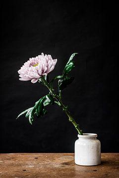 Witte bloem in witte vaas van Jenneke Boeijink
