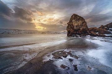 Frozen morning van Peter Poppe
