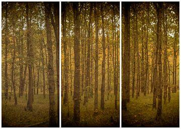 lauwersmeer triptychon 11 von anne droogsma