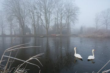 Zwanenmeer von Marco Bakker