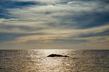 Rock im Meer von Cor de Hamer
