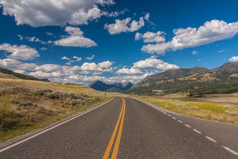 Endless roads in Yellowstone NP van Ilya Korzelius