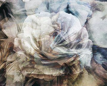 Roos Abstract van Jacky Gerritsen
