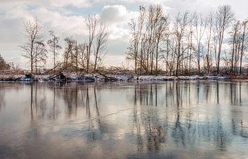 Kale bomen gereflecteerd in het water en ijs oppervlak van Ruud Morijn