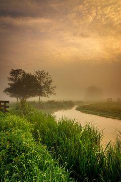 Misty mornings van Ard Jan Grimbergen