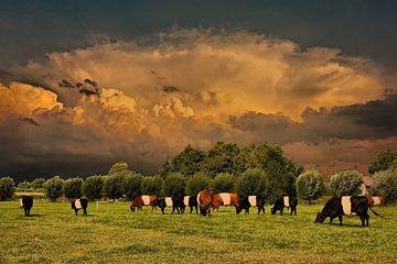 Wolken, Landschaft, Doornenburg, Niederlande von Maarten Kost
