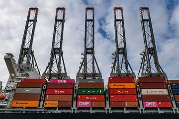Container Terminal Rotterdam van Nico Roos