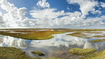 Ternaard Reflectie Waddenzee Nederland van R Smallenbroek